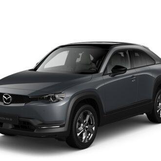 MX-30 - Polymetal Gray Metallic 3-tone -  Nissan Odyssey